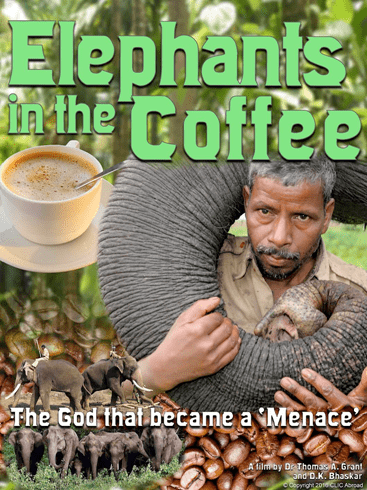 Elephantsinthecoffee-1