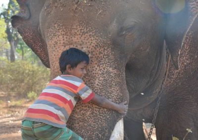 Mahout kid embracing the elephant